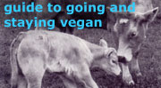 http://www.vegancampaigns.org.uk/images/govegan_index.jpg